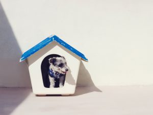 Mistakes To Avoid In Building Or Renovating A Home   Crouch & Lyndon Lawyers
